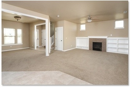 Ace Carpet Cleaning Process